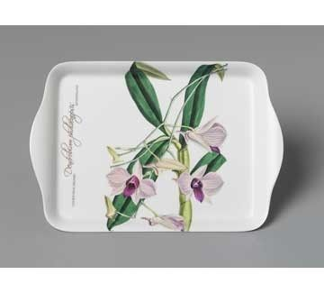ASHDENE Scatter Tray Cooktown Orchid - White Apple Gifts