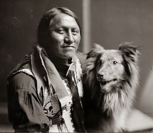 White Wolf: History and vintage photos of Native American dogs