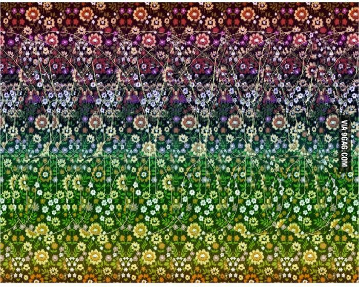 This is called stereogram. Can you see the animal?