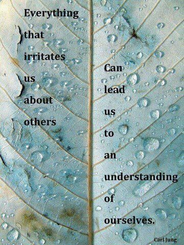 Carl Jung.  Self awareness
