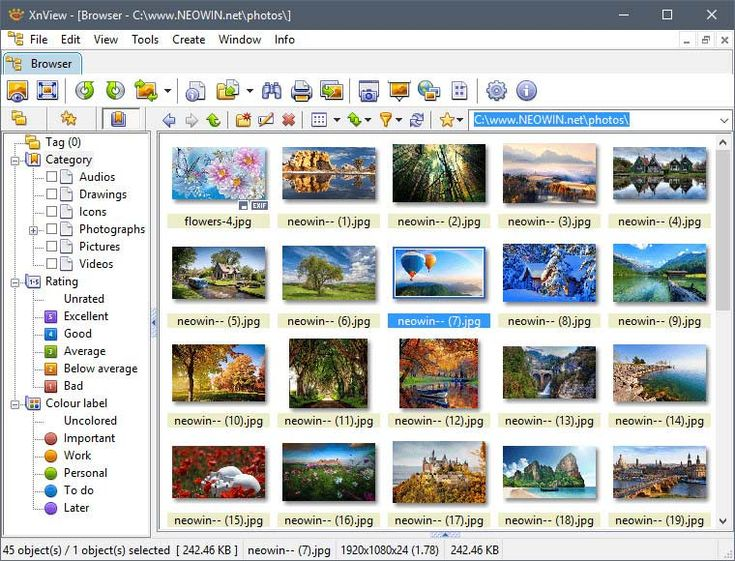 Top 10 Best Photo Viewers for Windows 10 (2020) in 2020
