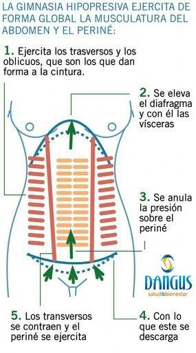 El objetivo fundamental de la Gimnasia Abdominal Hipopresiva es BAJAR LA PRESION INTRAABDOMINAL, para que no haya tanto empuje contra el piso pélvico y la faja abdominal, haciendo que los órganos internos estén mejor colocados y nuestro abdomen no esté tan prominente