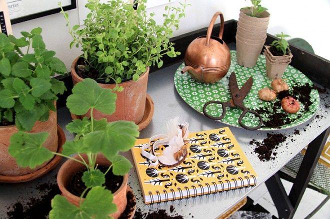 Trädgårdslängtan - Longing for gardening. Full list of all products at http://blogg.nordicdesigncollective.se/tradgardslangtan/