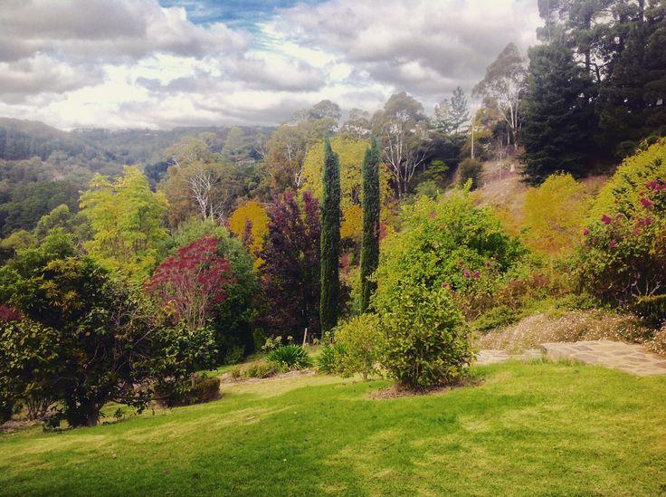 Autumn view from front garden of Amburwood, Basket Range, Adelaide Hills
