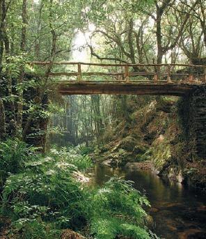 Ruta de A Mina de As Talladas en Santa Eulalia de Oscos, Asturias