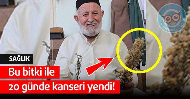 Manisalı Lütfü Acet Bu bitki ile 20 Günde Kanseri Yendi! - Faydalı Bilgin