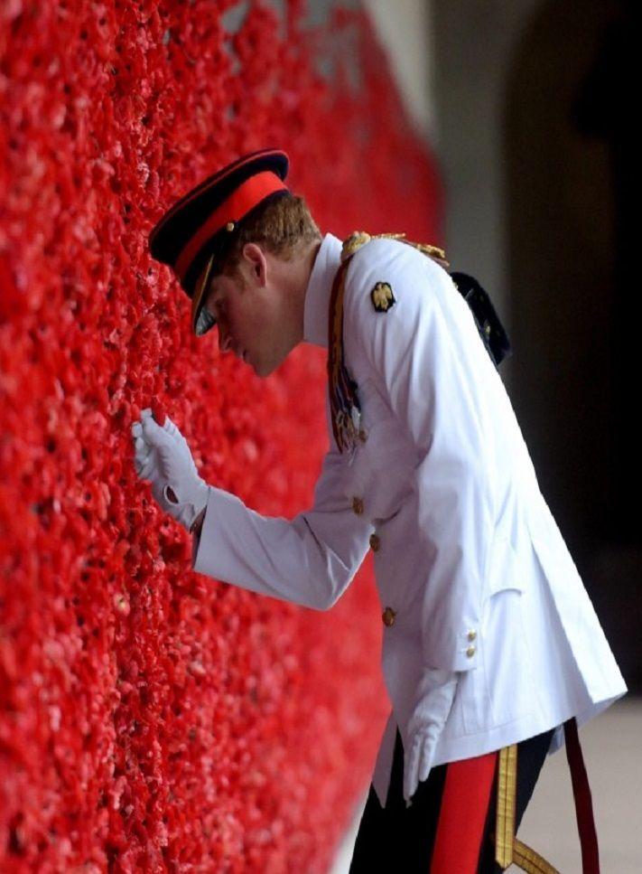Brytyjski książę Harry na cmentarzu wojskowym Australian War Memorial w Canberze wkłada kwiat maku, który jest najważniejszym symbolem brytyjskiego Dnia Pamięci żołnierzy poległych w wojnach.  http://www.tvn24.pl/zdjecia/zdjecie-dnia,31565,lista.html