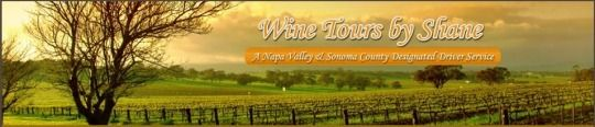 Experience Wine Tasting Tour in Napa Valley  If you are planning for an exciting holiday then visit the Napa Valley to explore the amazing wineries and the magnificent Valleys.