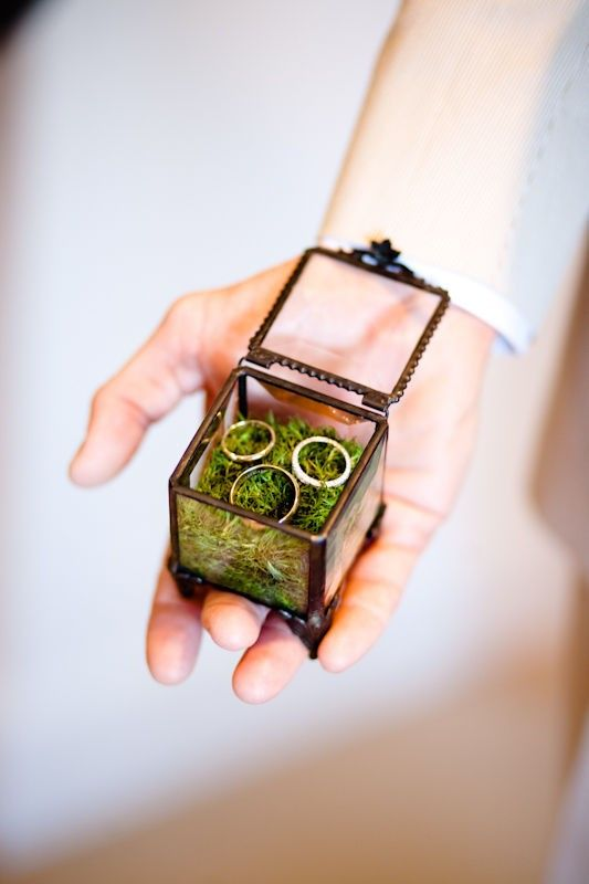 glass box + moss for rings