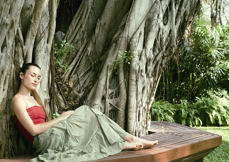 Take time on this luxury singles holiday to clear you mind and body in the beautiful surroundings of Chiva Som, Thailand.10 Well, Holiday Ideas, Cambodia Wwwkmorantravelcom, Life Well, Chivas Som, Fit Diet, Gardens Trees, Detox Holiday, Travel Ideas