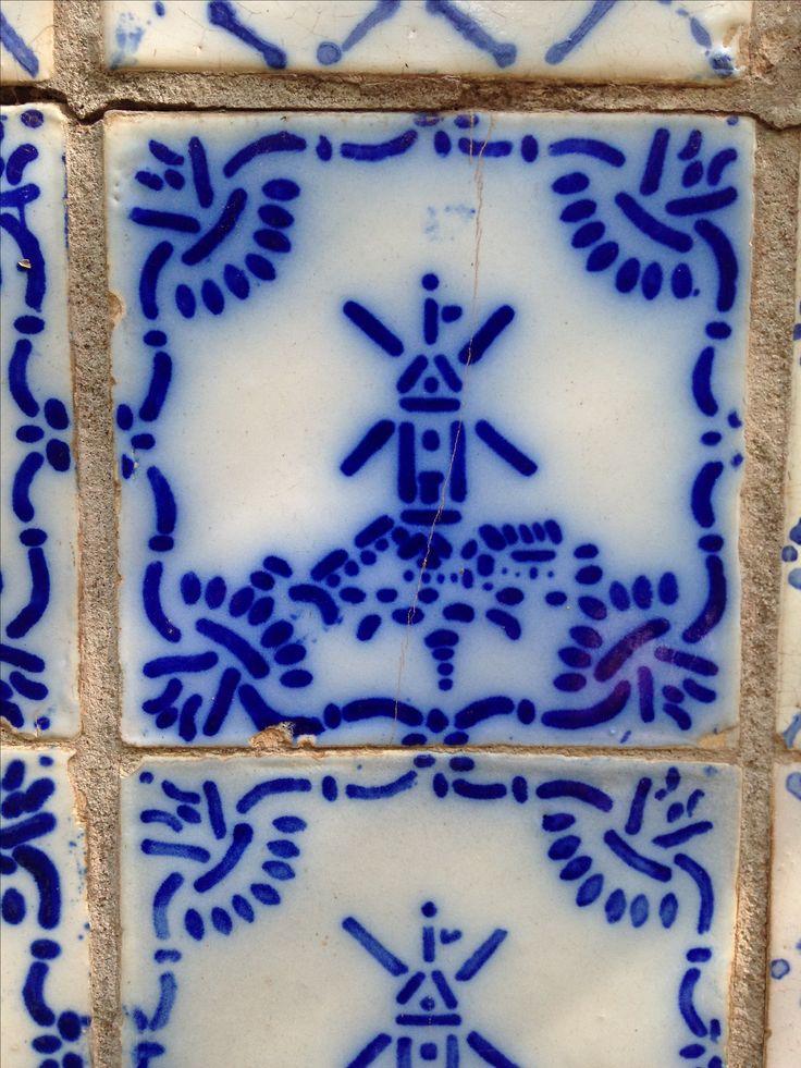 Azulejo , Pas de Caláis. Maipu. Mendoza.  Fotografía: Marta Day. Argentina