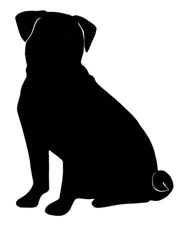 Take a look at this Black Pug Temporary Tattoo - Set of 10 by Steadfast Friends on #zulily today!
