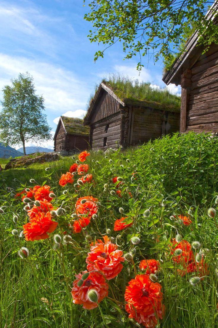 Voorjaar in Noorwegen.