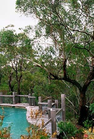 stunning bushland pool