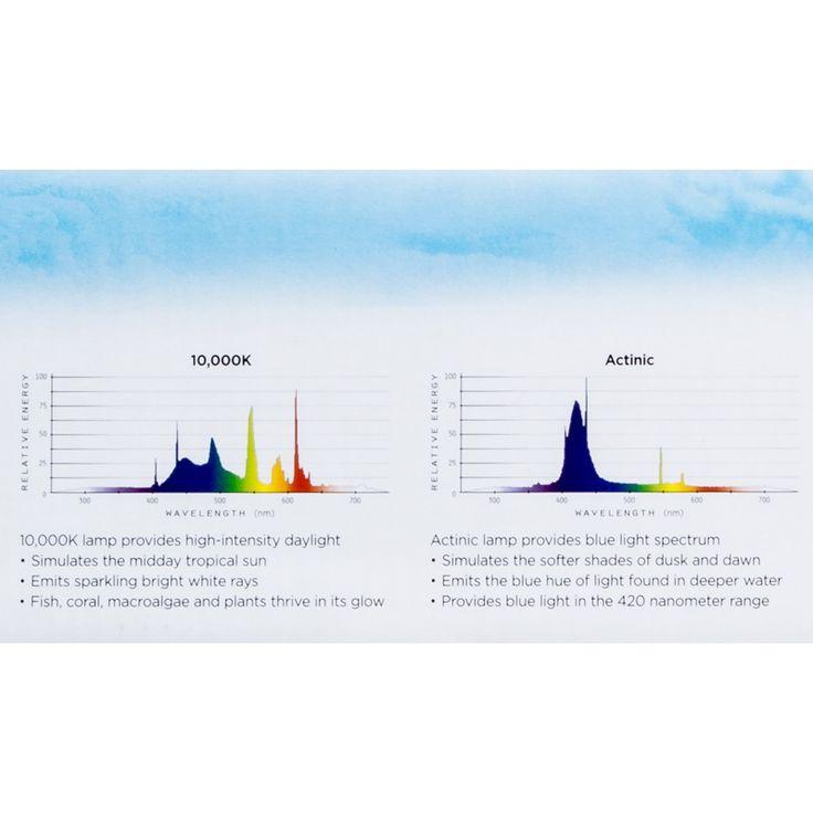 Coralife Aqualight T5 Dual Fluorescent Light Fixture For: 1000+ Ideas About T5 Light Fixtures On Pinterest
