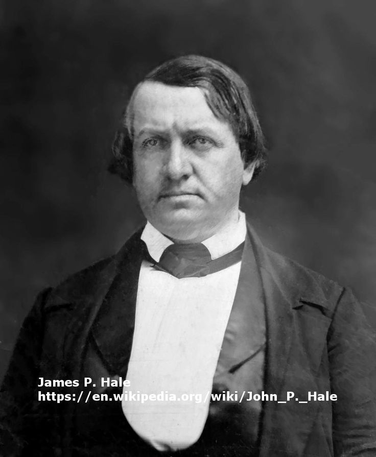 John Parker Hale served in the United States House from 1843 to 1845 and in the US Senate from 1847-53 and 1855-65. He began his career as a Democrat, but helped establish the anti-slavery Free Soil Party and eventually joined the Republican Party.