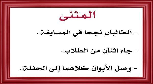 بحث عن المثنى في اللغة العربية تعريف إعراب أمثلة واضحة Arabic Calligraphy