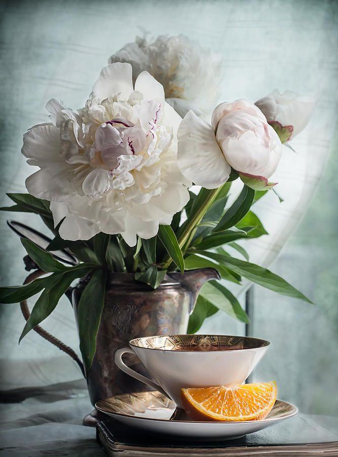 Peonies Tea And Oranges Photograph by Maggie Terlecki