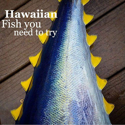 Hawaiian names for the most delicious fish and where to for Hawaiian fish names
