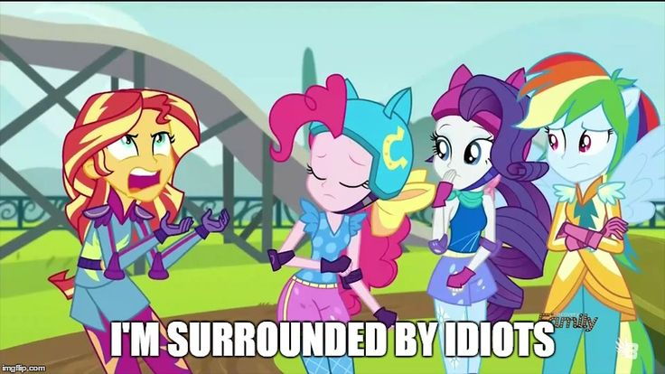 Sunset Shimmer Im surrounded by idiots meme by PinkieSofiaLover on DeviantArt