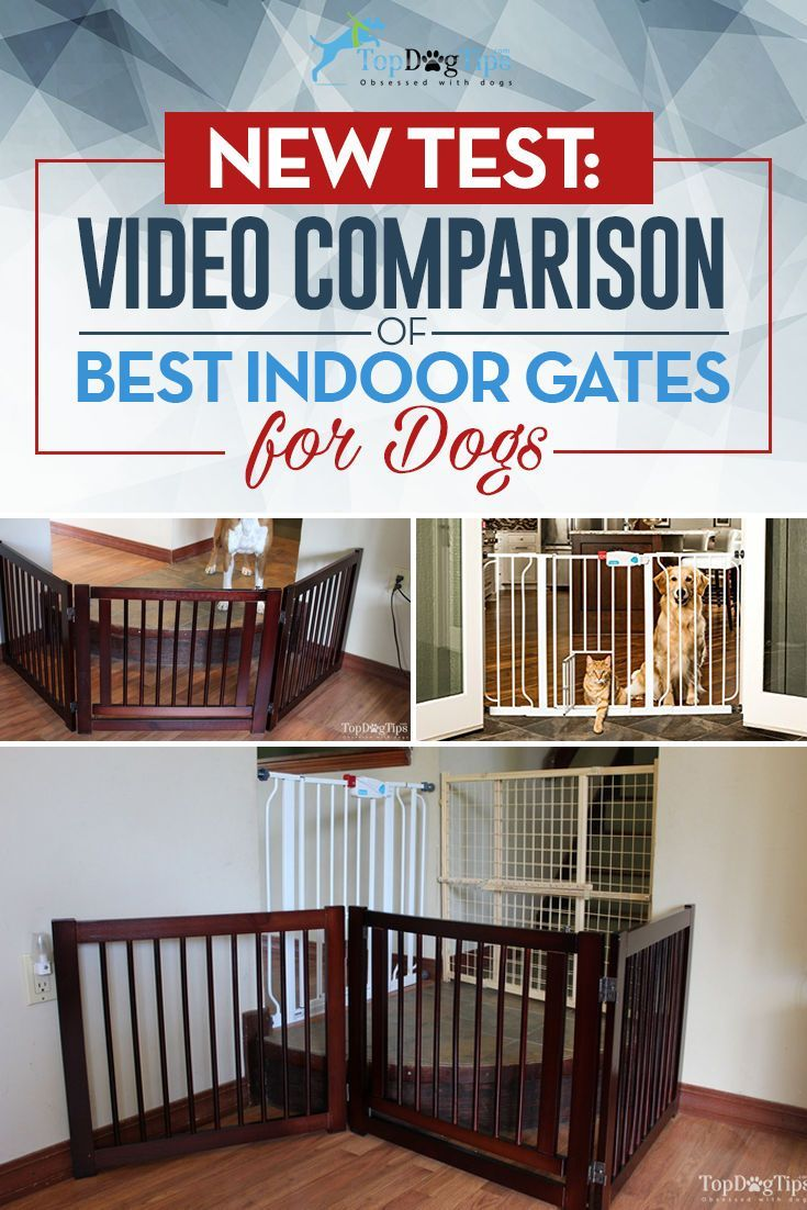 Best Dog Gates For Stairs U0026 Indoors: Comparison Of Top Brands (2016)