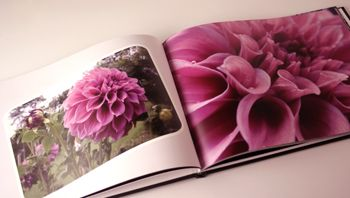 Give a large Photo Book - A FLOWER MEDLEY - Support the lasting gift of a movie or book by adding these sensory gifts to support engagement and reminiscence for a person in care. Judi Parkinson Activities  http://sharetimepictures.com.au/GIFTS.php