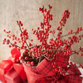 Fai da te Natale: le bacche rosse | Donna Moderna