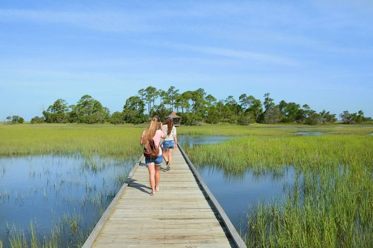 Some of the most interesting things to do in Myrtle Beach are lesser known or can be found off the beaten path. Learn about the history, character and backbone of the Grand Strand while enjoying some of these activities. Off the Beaten Path Things to Do in Myrtle Beach 1. Heritage Shores Nature Preserve is …