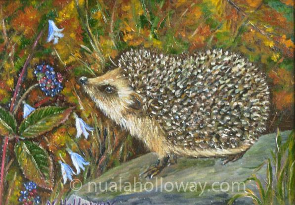 """""""Hedgehog"""" by Nuala Holloway - Oil on Board www.nualaholloway.com #Hedgehog #NualaHolloway #IrishArt"""