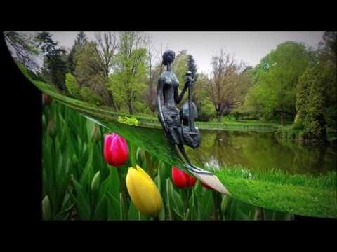 Tulipán virágzás a Nemzeti Botanikus kertben Vácrátóton - YouTube  https://www.youtube.com/watch?v=IKQxrKEH2Uw