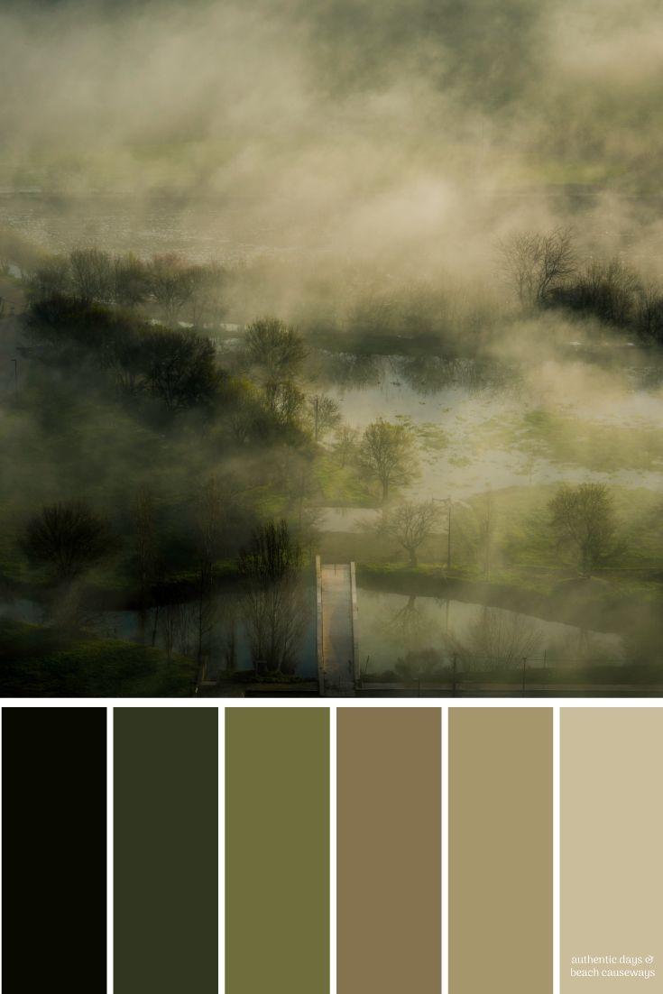 Hazy Jungle Color Palette For The Home Paint Colors Brand