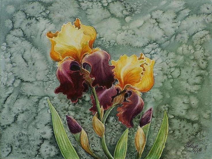 Edyta Nadolska Watercolor Art - 'Bearded Iris'