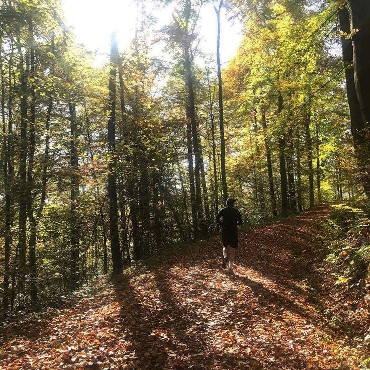 Ein sonniger #RUN711 am Sonntag und dann kann die neue Woche kommen! Es war wie immer eine feine Runde: @lukizzl @doandlive @jana_anastasia_ @werun711  _________ #run711 #stuttgart #0711 #run #joggen  Bild: @doandlive