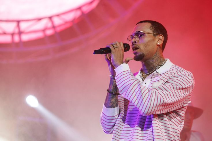 Chris Brown Charged With Misdemeanor Counts For Unlawful Pet Monkey