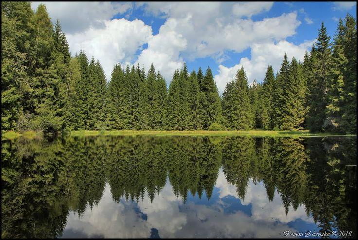 National parks in the Czech republic. Šumava National Park. Lake Jelení