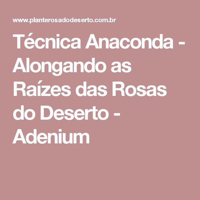Técnica Anaconda - Alongando as Raízes das Rosas do Deserto - Adenium