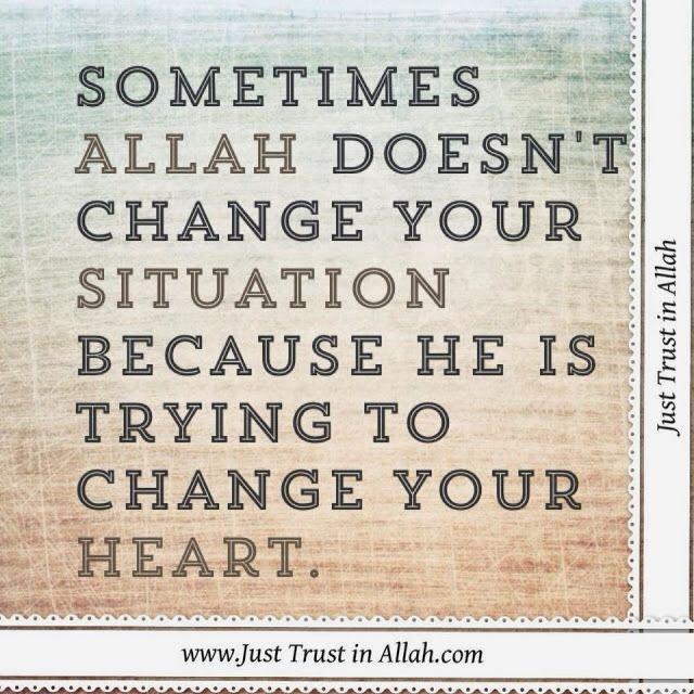 Just Trust in Allah
