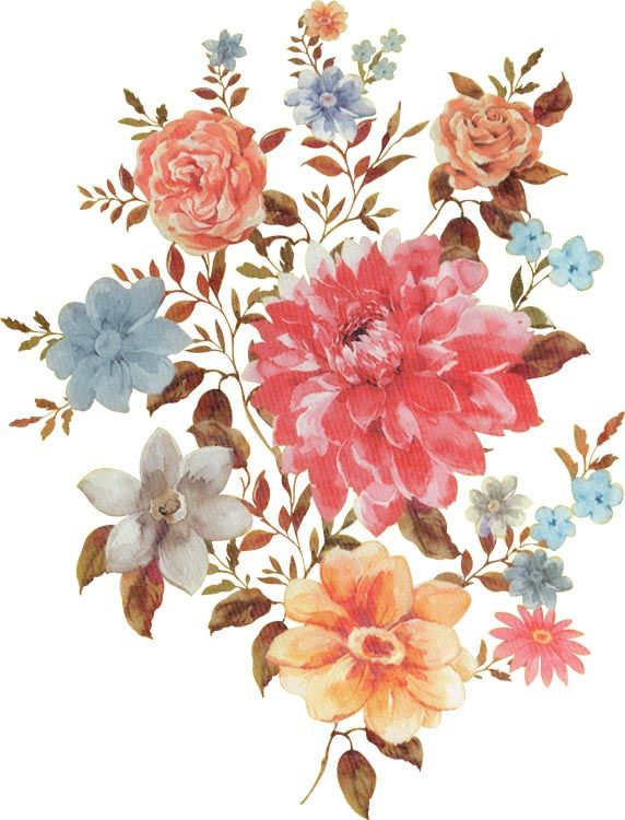 Exquisite Wildflower Bouquet Vector Png Small Fresh Fine Bouquet Png Transparent Clipart Image And Psd File For Free Download Flower Drawing Flower Painting Flower Illustration