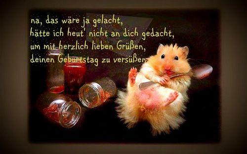 Alles Gute zum Geburtstag - http://www.1pic4u.com/blog/2014/06/02/alles-gute-zum-geburtstag-213/
