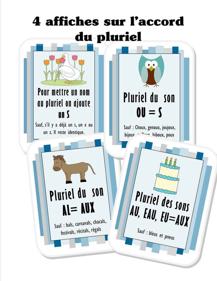 Affiches sur l'accord du pluriel http://www.mieuxenseigner.ca/store/index.php?route=product/product&product_id=150