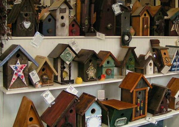 Where all the birdies live!