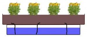 Günstiges Bewässerungssystem für den Balkon