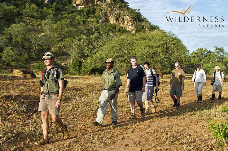 Pafuri Walking Trail -The Limpopo and Luvuvhu rivers host the highest density of nyala in the Kruger and species such as eland, Sharpe's grysbok and yellow-spotted rock dassie, which are difficult to find further south in the Park, are regularly seen here. #Safari #Africa #SouthAfrica #WildernessSafaris