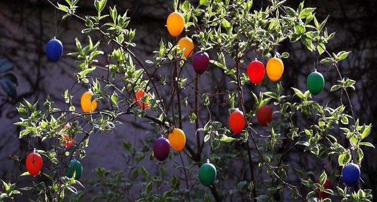 Achim on flickr, Happy Easter !, Easter decoration in our neighbours garden, Frankfurt-Nordend, 2014