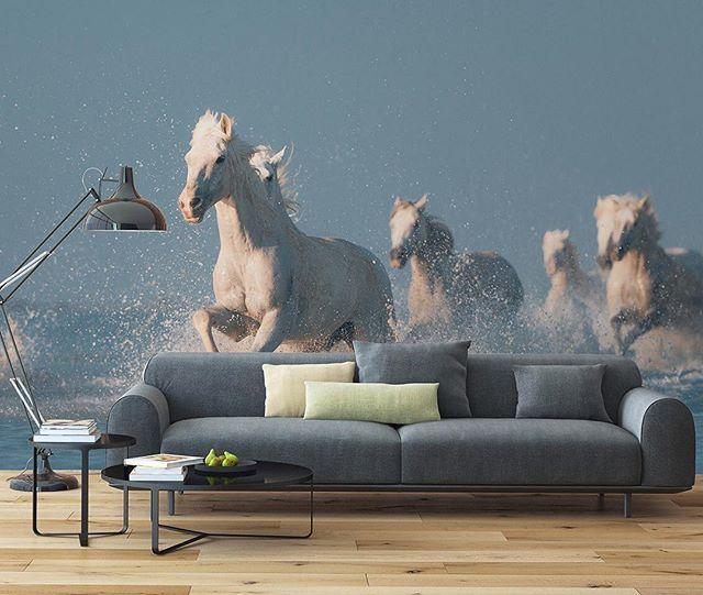 You do not have to go to Mediterranean coast of France to see the herds of wild white horses of Camargue. Stay home! We will do the rest!! #wallpera #ifwallscouldtalk #wallpaper #wallcovering #duvarkagidi #duvarkağıdı #divarkagizi #mural #poster #tapete #tapeti #tapeta #fondecran #tapetsaria #sfondo #kertasdinding #papeldeparede #oboi #papelpintado #tapet #homedecor #interiordesign #architecture #instadesign #homedesign #decoration #decoração #inspiration #animals #angelsofcamargue