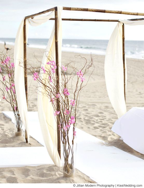 Beach Wedding Ideas On a Budget   Simple beach wedding arch with white flowing fabric, branches and pink ...