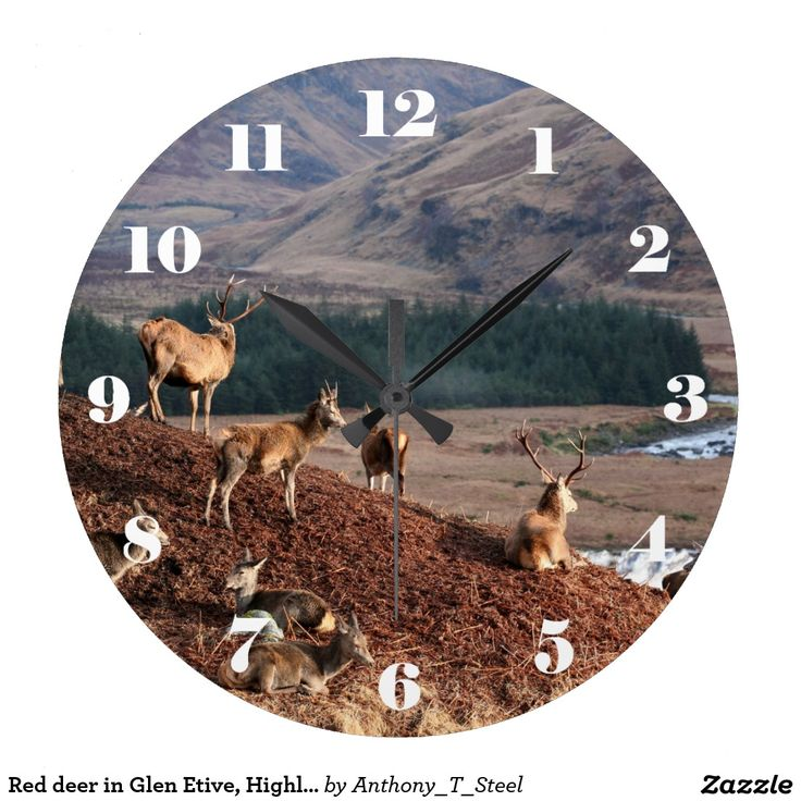 Red deer in Glen Etive, Highlands of Scotland Large Clock A lovely landscape clock, with a picture of Red deer in Glen Etive, Highlands of Scotland. The clock has easy to read white numbers.