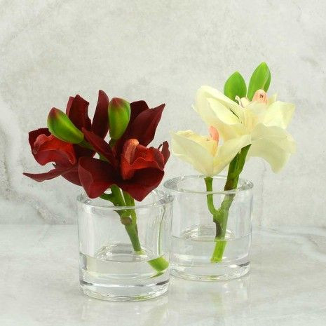 Cymbidium Orchid in Glass - Other Accessories - Accessories & Gifts - Gifts