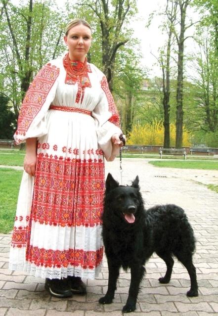 Croatian Shepherd / Sheepdog #Dogs