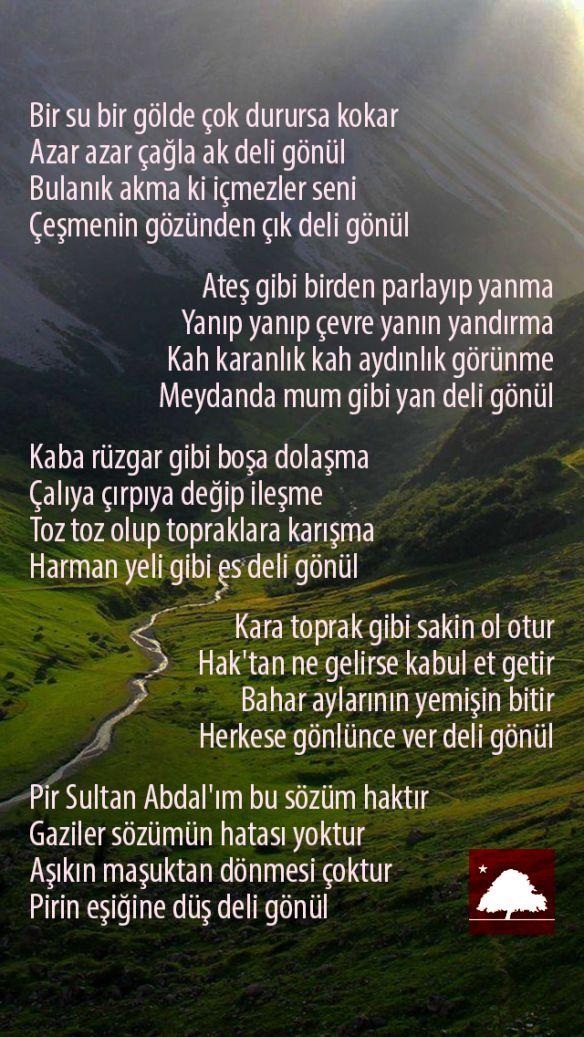 Pir Sultan Abdal : Deli Gönül Anadolu Çınarları poster